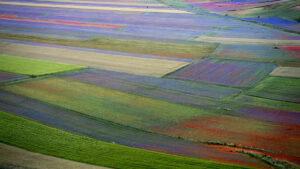 Viaggio organizzato Casteluccio di norcia fioritura lenticchie e castel sant'angelo sul nera