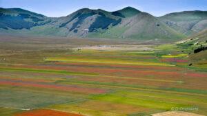 Viaggi organizzati a castelluccio di norcia per la fioritura delle lenticchie dalle marche